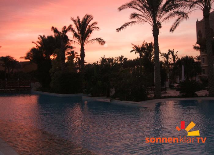 Pool und Palmen beim Sonnenklar-Urlaub