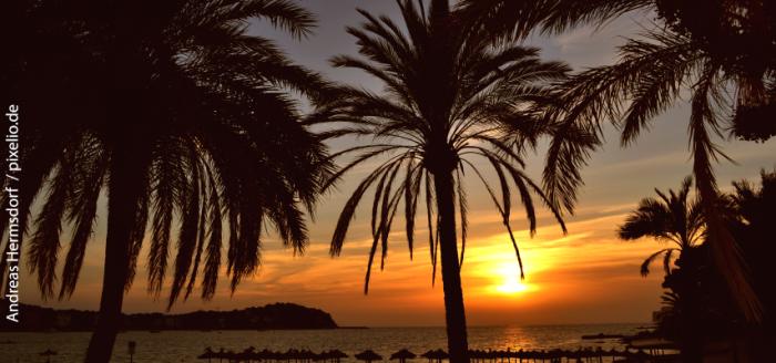 Spanien_Sonnenuntergang check