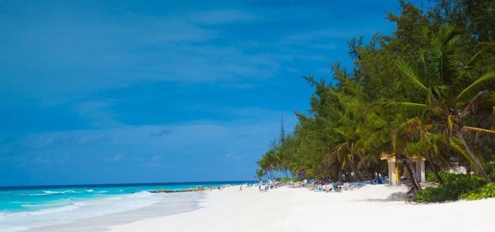 Barbados Strand Meer Palmen