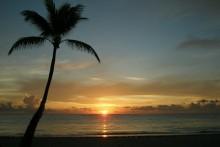 DomRep Sonnenuntergang Palme Strand