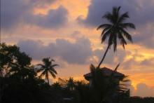 Sri Lanka Sonnenuntergang Palme Himmel