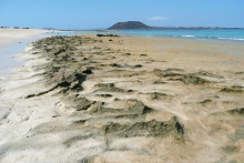 Fuerteventura_Meer_Strand_Spuren