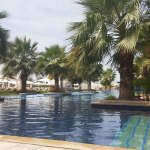 fairmont-bab-al-bahr-pool-palmen