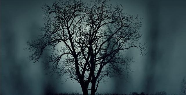Baum Halloween pixabay