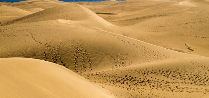 Duenen Gran Canaria pixabay