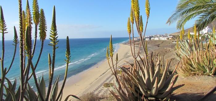Strand, Meer, Wellen, Fuerteventura_pixabay
