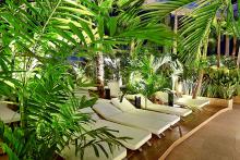badewelt_euskirchen_palmenparadies