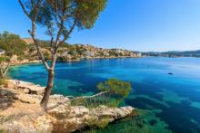 wegde_Mallorca_Canyamel