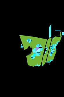 reise-preisvergleich-frau-karte_1