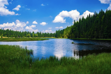 bayrischerwald